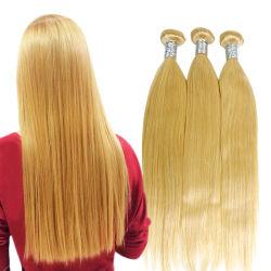 Het nieuwe Haar van de Blonde van de Manier 613# Braziliaanse Menselijke