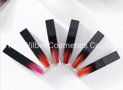 Матовая Долговечные Lipgloss Water-Proof макияж