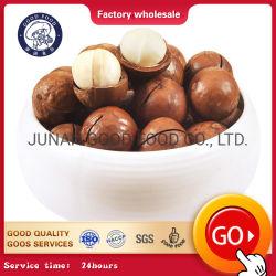 Noci di noce di macadamia sane organiche grezze dei grassi con e senza le coperture
