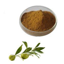 Extrait de Feuilles d'olive de haute qualité 10%-40% de l'oleuropéine
