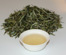 Abaixe a prevenção do câncer de cafeína Tea-Bai Branco Premium Mu Dan