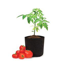 Eco de alta qualidade 10 galões/Tomate vegetais/Flower Crescer Sacos quadrados Non-Woven biodegradáveis de plantas de viveiro crescer Bag