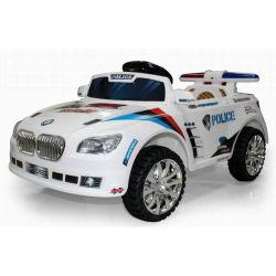 OEM 설계 카본 파이버 전기 RC 자동차