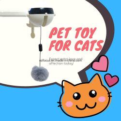 Automatisch Cat Teasing-speelgoed, elektrisch tilspeelgoed, interactieve roterende bal Esg14459