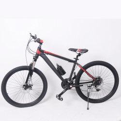 Gebirgsfahrrad-Fahrrad des China-Fabrik-kundenspezifisches Erwachsen-24s/21s