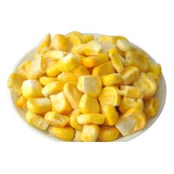 Fd Liofilizado granos de maíz dulce, el polvo