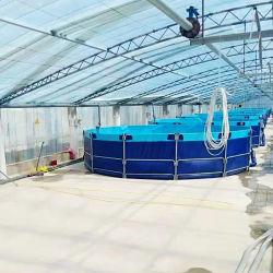 De super Tank Koi van pvc van de Kwaliteit Opvouwbare om Plastiek die de Vijvers van Vissen vouwen