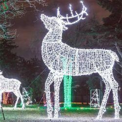 5m 서서 따뜻해지는 백색 거대한 크리스마스 장식 사슴