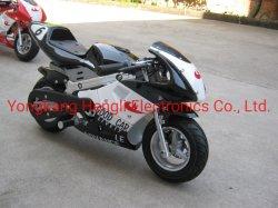 500W 36V Electric Pocket Bike et motocyclettes pour les enfants