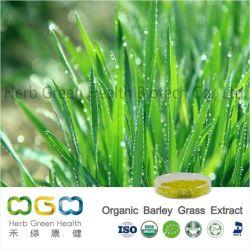 天然植物抽出有機大麦草エキス 圧力および重量制御ハーブハーブハーブ
