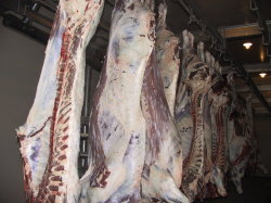 Slaughterhouse Abattoir를 위한 자동적인 Pig Carcass Splitting Half Band Saw Machine Pig Slaughtering Cutting Machine