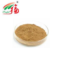 Horny Goat Weed Seed Extract Epimedium extrait 40 % de l'icariine