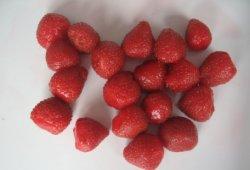 425g in Büchsen konservierte Erdbeere in der hellen Sirup-Nahrung