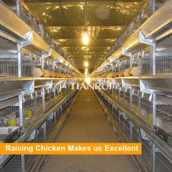 Конструкция Tianrui птицы оборудование заводчика дом куриное мясо птицы разведения отсека для жестких дисков