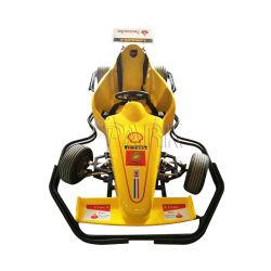 전기 경주 Karting 아이들 경주를 자전하는 위락 공원 소형 360 정도는 Karts 간다