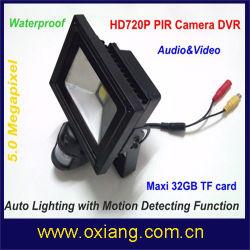 Commerce de gros extérieur/intérieur Projecteur à LED étanche Caméra Motion WiFi activé la lumière de la caméra de sécurité ZR710W Caméra de vidéosurveillance sans fil