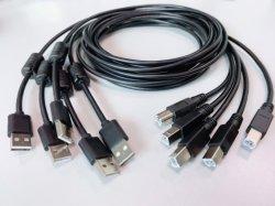Câble USB Type A à type B mâle 1m 3m 5m du port de Type B pour l'imprimante