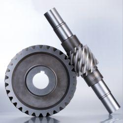Arbre de pignon à vis sans fin en acier inoxydable Pièce de rechange de pièces d'usinage CNC
