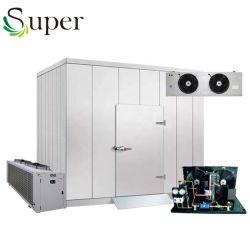 Isoliertür-Kühlraum mit Energieeinsparung für Fisch-Speicher