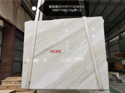 Lastra di marmo bianca della stanza da bagno della parete della decorazione residenziale del pavimento