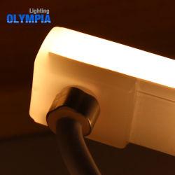 indicatore luminoso di striscia al neon flessibile di 24V LED