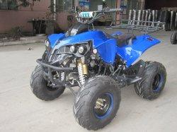 中国の専門のガス動力を与えられた 125cc ATV のスポーティな四重極