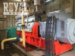 El poder real 50kw de potencia de gasificación de biomasa vegetal, gasificador de madera, el gasificador de biomasa generador de energía