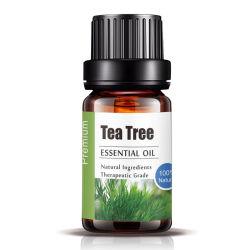 ODM piccolo MOQ dell'OEM dell'olio essenziale della natura dell'olio dell'albero del tè 10ml