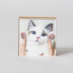 Réfrigérateur ornement aimant Acrylique & Bambou Cadre Photo Photo