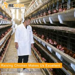 ريتش التلقائي الدواجن معدات الزراعة الدجاج الطبقة البطارية Cage