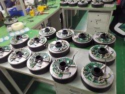 China Fabrik Preis Präzision Automatische Traktor Führungssystem Motortreiber 12V 100W DD Motor Direct Drive BLDC-Motor