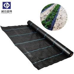 La Chine usine la vente en gros tapis noir PP Anti Mauvaises herbes