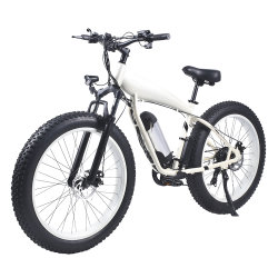 26'' de los neumáticos de la Grasa China bicicleta eléctrica para el deporte al aire libre