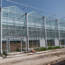 フェンログラス温室モダンな農業の緑の家