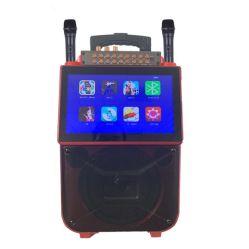 Sistema de colunas de Karaoke 6,5 polegadas Caixa com 2 Mic e função da tela do telefone