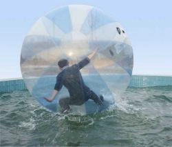 Giocattolo gonfiabile variopinto della sosta dell'acqua che cammina sulla sfera della bolla dell'acqua