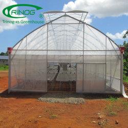 Современных span HDPE сельского хозяйства фильм зеленый дом для коммерческих используется