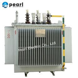 11-220 기름 유형과 건조한 유형을%s 가진 Kv 전력 변압기 그리고 배급 변압기