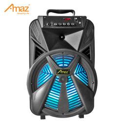 Portatile per feste con audio Stage Party con altoparlante wireless per esterni Bluetooth da 12 pollici Altoparlante trolley