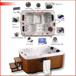 На заводе Mini крытые горячие ванны и холодной SPA горячая ванна с джакузи на панели управления
