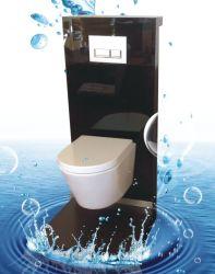 Australisch StandaardWashdown Muur Gehangen Toilet met het Reservoir van het Glas Geberit (6013)