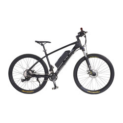 2021 가장 강력한 전기 자전거 1500W 리튬 파워 자전거 시티 전기 자전거 저렴한 전자 자전거
