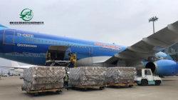 Luchttransport, Zeevervoer, Express Delivery, Double Clear Package Tax to door Transportation Service van China naar Zuid-Afrika