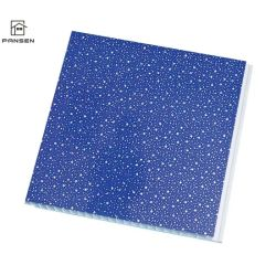 تصميم فني لوحة حائط تزيين من مادة PVC للسقف الصين للديكورات