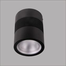 15W 20W 30W Plafonnier LED montées en surface vers le bas LED Lampe à LED cylindre Downlight LED Spots plafond allume la LED Downlights LED Lampe LED montés au plafond
