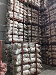 Chinese Shandong het Hete Witte Knoflook en Natuurlijk Knoflook 5.0cm+ van de Verse Groente