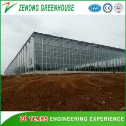 Коммерческие большие закаленное стекло в плавающем режиме зеленый дом для посадки/сельского хозяйства и рыболовства и животноводства/Eco ресторан