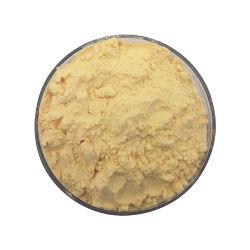Usine de semences de concombre de poudre d'approvisionnement des aliments sains