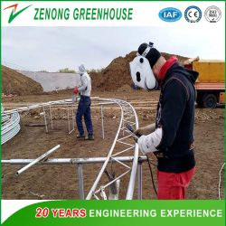 دفيئة شمسية بنظام التسخين الذاتي مع جدار ظهر التربة الذي بناه متخصص شركة جرينهاوس للبناء لزراعة الخضراوات الشتوية