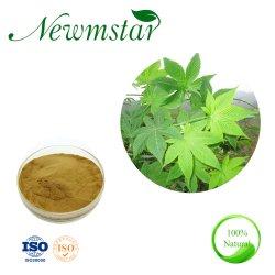 Health & Medical extracto de té dulce el 70% Rubusoside